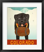 Framed Colorado Beer Dog Black