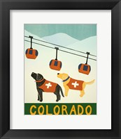 Framed Colorado Ski Patrol