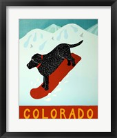 Framed Colorado Snowboard Black