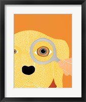 Framed Eye Exam Yellow