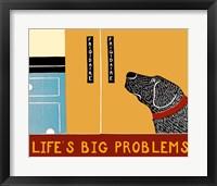 Framed Life's Big Problems Banner