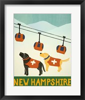 Framed New Hampshire Ski Patrol