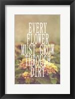 Framed Every Flower