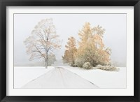 Framed Autumn Snowfall