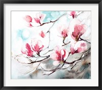 Framed Magnolia, Spring