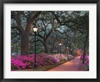 Framed Forsythe Park