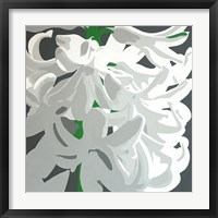Framed White Hyacinth
