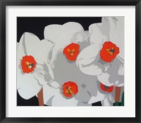 Framed White Narcissus
