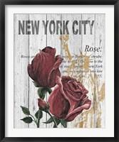 New York Roses Framed Print