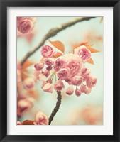 Framed Waiting For Spring