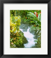 Framed Waterfall, Tabacon, Costa Rica
