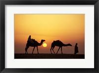 Framed Caravan, Morocco