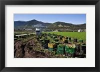 Framed Harvesting Lettuce near Ventas de Zafarraya, Spain