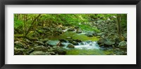 Framed Creek in Great Smoky Mountains National Park, Tennessee