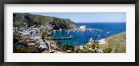 Framed Santa Catalina Island, CA