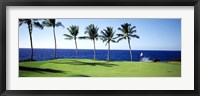 Framed Golf Course, Big Island HI