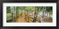 Framed Gooseberry River, Gooseberry Falls State Park, Minnesota