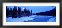 Framed Moon Rising Above The Forest, Banff National Park, Alberta, Canada