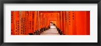 Framed Tunnel of Torii Gates, Fushimi Inari Shrine, Japan