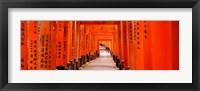 Framed Tunnel of Torii Gates, Fushimi Inari Shrine, Japan
