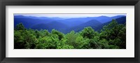 Framed Smoky Mountain National Park, Tennessee