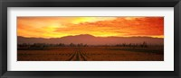 Framed Sunset over Napa Valley