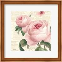 Framed Roses in Paris VI