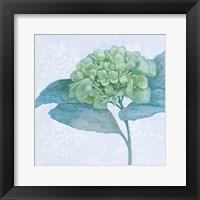 Framed Blue Hydrangea II Crop