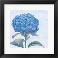 Framed Blue Hydrangea III