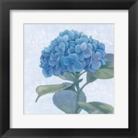 Framed Blue Hydrangea IV