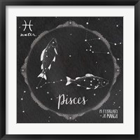 Framed Night Sky Pisces