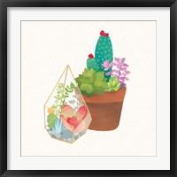 Framed Succulent Garden I