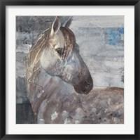 Framed Appaloosa