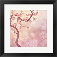 Sweet Cherry Blossoms V Framed Print