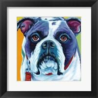 Cute Pups II Framed Print