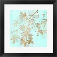 Aqua & Gold Maple II Framed Print