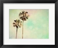 Framed Palm Trees I