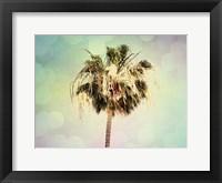 Framed Palm Trees III