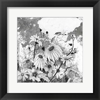 Iza's Garden I Framed Print