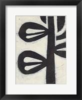 Framed Symbiotic V