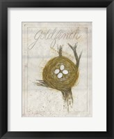 Nest - Goldfinch Framed Print