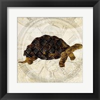 Framed Steam Punk Turtle II