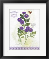 Flower Study on Lace II Framed Print