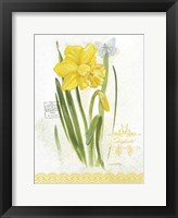 Flower Study on Lace V Framed Print