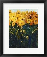 Color Spectrum Flowers II Framed Print
