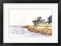 Solitary Coastline III Framed Print