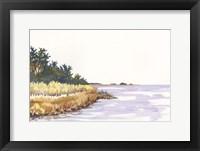 Solitary Coastline IV Framed Print