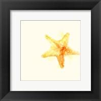 Framed Tidal Impressions III