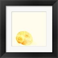 Tidal Impressions VI Framed Print