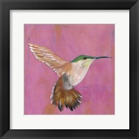 Framed Sweet Hummingbird I